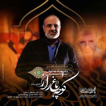 دانلود آهنگ محمد اصفهانی کوچه باغ راز